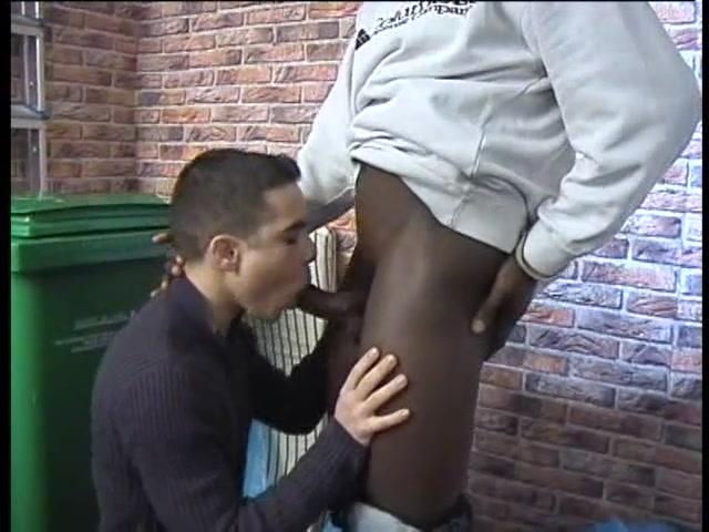 black gay sodomie rebeu poilu